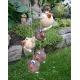 Ptáci zavěsní